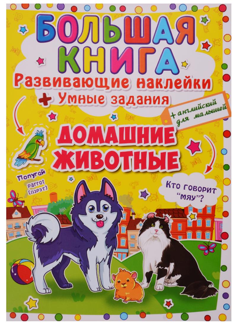 Большая книга. Развивающие наклейки + Умные задания. Домашние животные (+английский для малышей) обучающая книга мозаика синтез развивающие наклейки для малышей один много мс10355