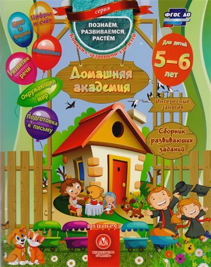 Ищук Е Домашняя академия Сборник развивающих заданий для детей 5-6 лет