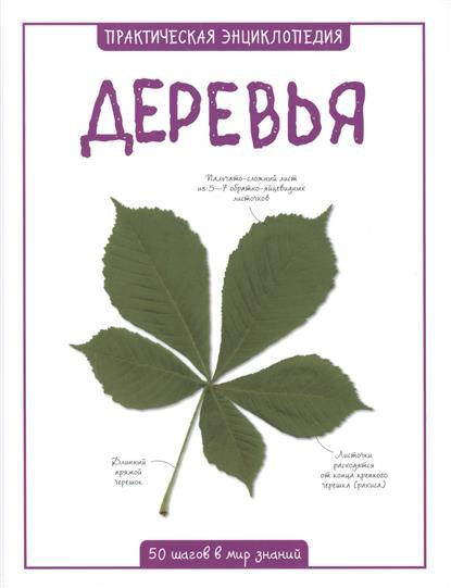 Бедуайер К. Деревья. 50 шагов в мир знаний бедуайер к тиффани лучшие произведения