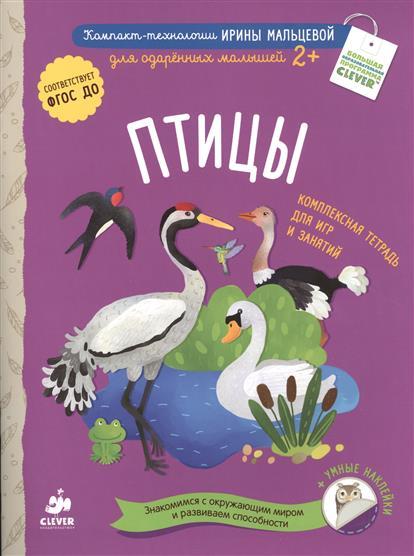 Птицы: Комплексная тетрадь для игр и занятий + умные наклейки (2+) мальцева и дикие звери комплексная тетрадь для игр и занятий знакомимся с окружающим миром и развиваем способности умные наклейки