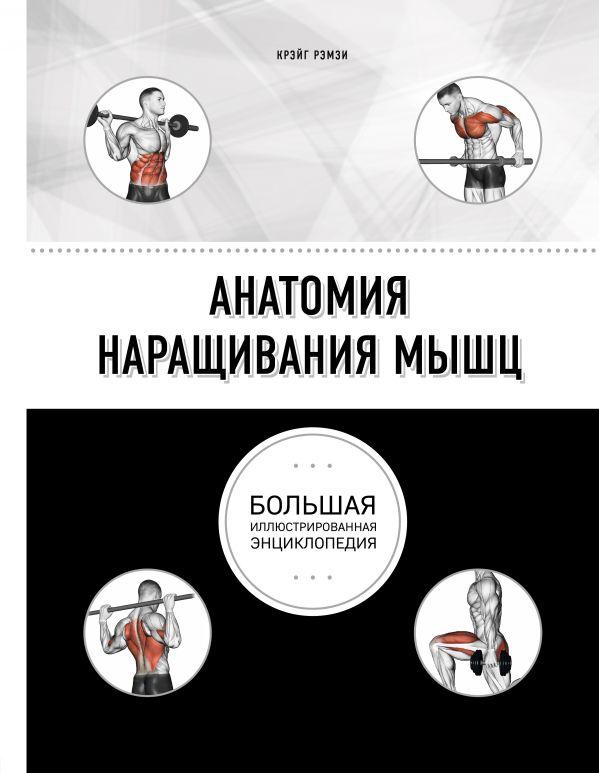 Рэмзи К. Анатомия наращивания мышц. Большая иллюстрированная энциклопедия