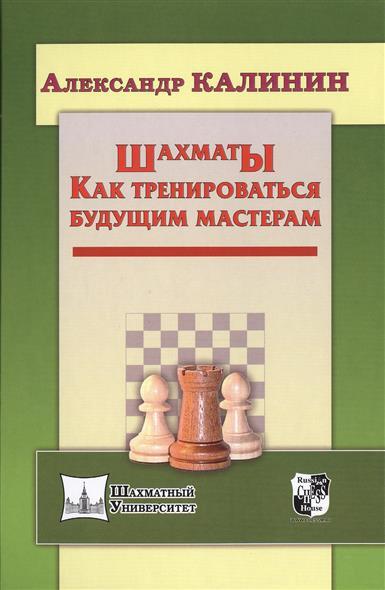 Калинин А. Шахматы. Как тренироваться будущим мастерам зайцев а шахматы уроки гроссмейстера