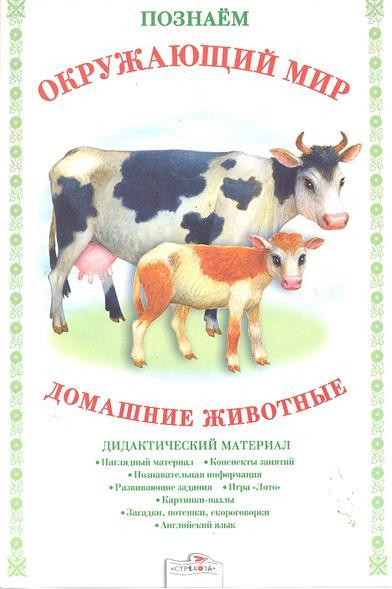 Домашние животные Дидакт. материал
