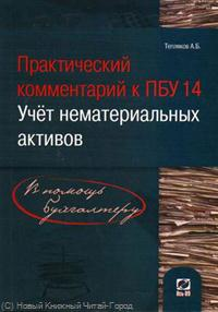 Практический комм. к ПБУ 14/2007 Учет нематер. активов