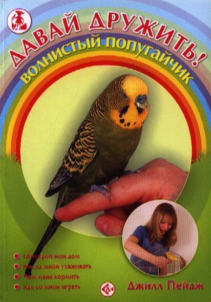Давай дружить Волнистый попугайчик