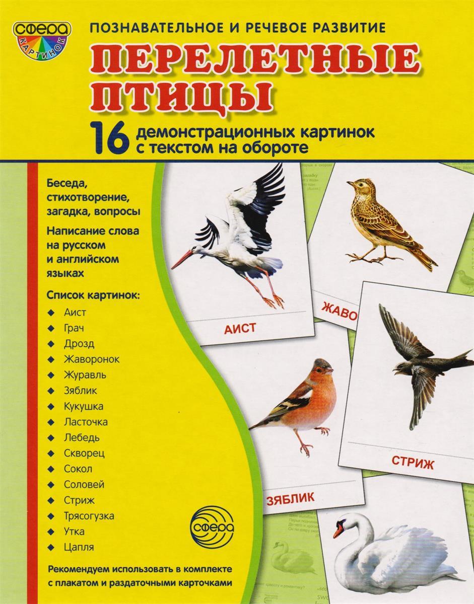 Цветкова Т. Перелетные птицы. 16 демонстративных карточек с текстом на обороте перелетные птицы