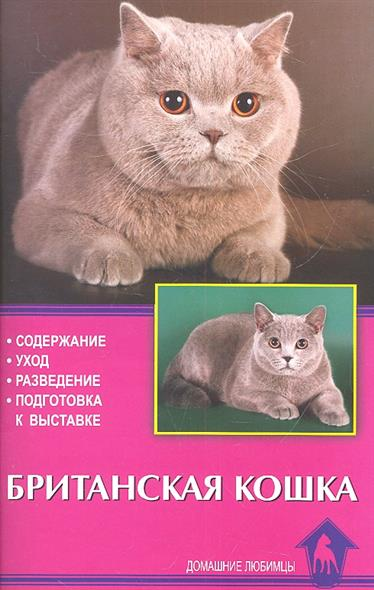 Британская кошка. Содержание. Уход. Разведение. Подготовка к выставке