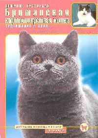 Кизельбах Д. Британская короткошерстная кошка Содержание и уход