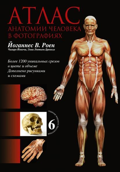 Анатомия. Иллюстрированный атлас. Более 1200 уникальных срезов в цвете и объеме. Дополненно рисунками и схемами Шестое издание