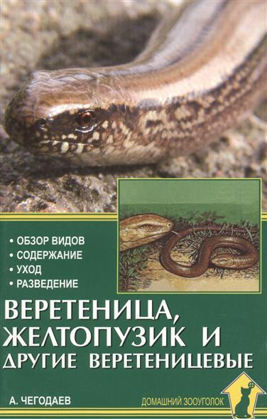 Веретеница, желтопузик и другие веретеницевые. Обзор видов. Содержание. Уход. Разведение