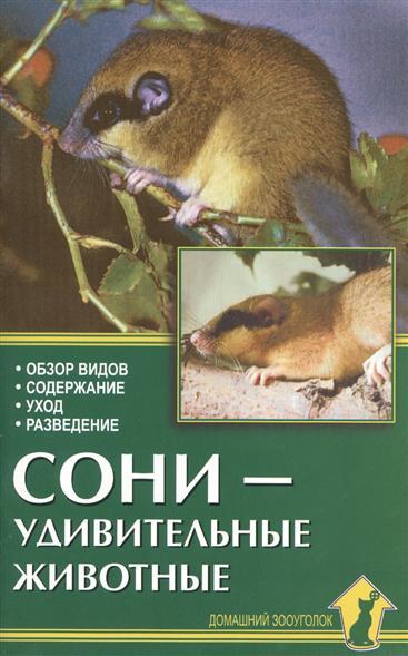 Рахманов А. Сони - удивительные животные