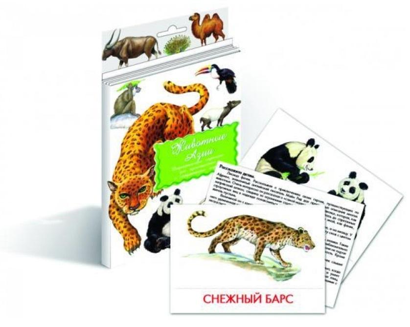 Животные Азии  Дидакт. карточки дидактические карточки животные азии
