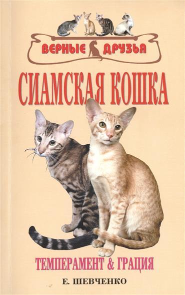 Сиамская кошка. Темперамент и грация