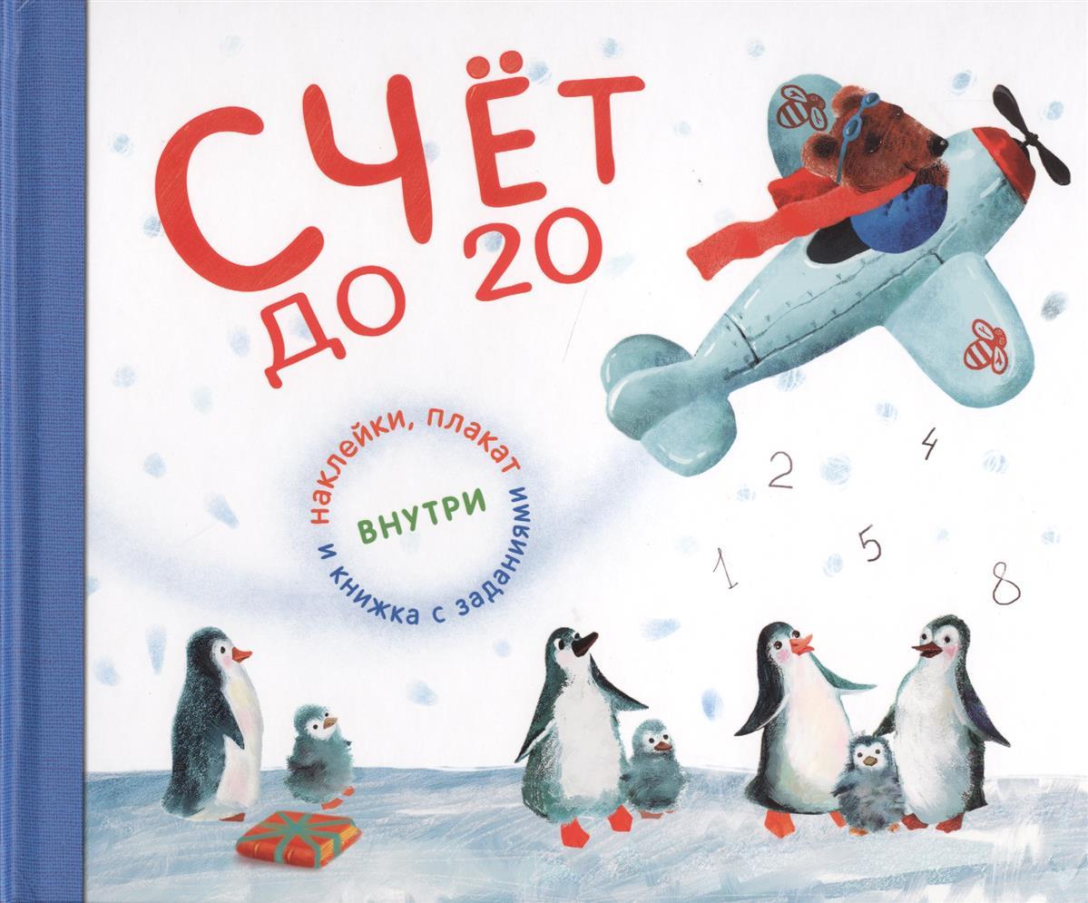 Михайлов П. Счет до 20 с увлекательными заданиями, плакатом и наклейками михайлов п на два фронта