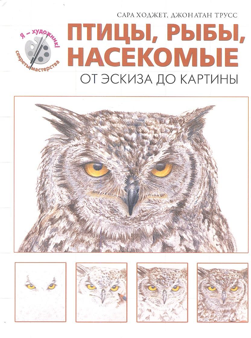 Ходжет С., Трусс Дж. Птицы, рыбы, насекомые. От эскиза до картины насекомые от цветов