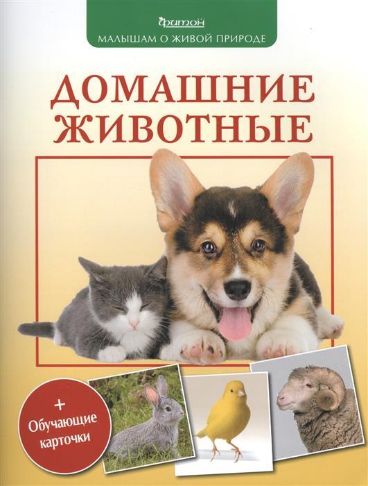 Волцит П. Домашние животные волцит п ред животные самая увлекательная энциклопедия для малышей