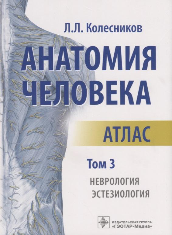 Колесников Л. (авт.-сост.) Анатомия человека. Атлас. Том 3. Неврология. Эстезиология колесников л анатомия человека атлас том 2 спланхнология