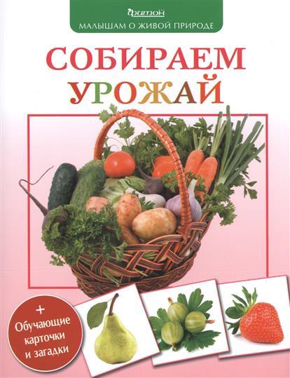 Волцит П. Собираем урожай