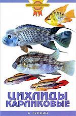 Гуржий А. Цихлиды карликовые а гуржий офисный аквариум