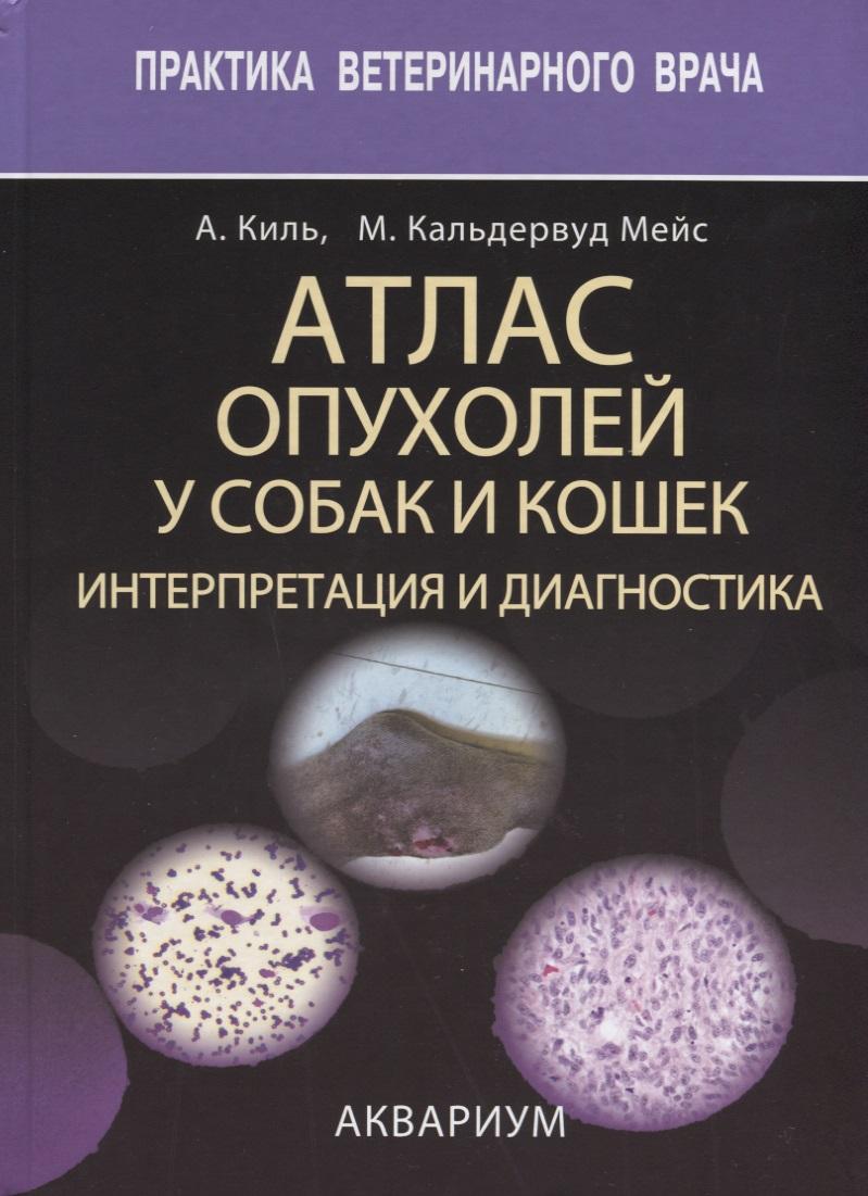 Киль А., Мейс М. Атлас опухолей у собак и кошек. Интерпретация и диагностика эпилептические приступы у детей как первый симптом опухолей