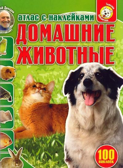 Преображенская Н. КН Домашние животные Тошкина бибиблиотека ильиных н в домашние гамбургеры