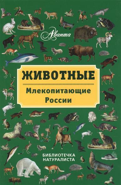 Бабенко В. Животные. Млекопитающие России бабенко в г животные