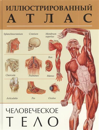 Рублев С., Афанасьев С., Феданова Ю. (ред.) Человеческое тело. Иллюстрированный атлас серия иллюстрированный справочник человеческое тело комплект из 3 книг