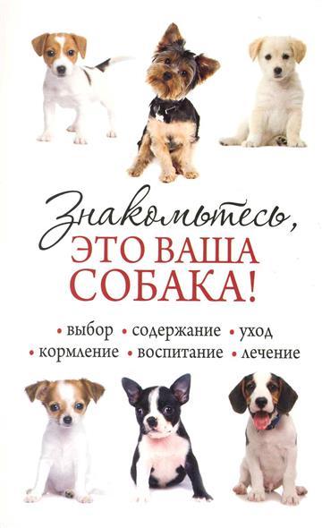 Знакомьтесь это ваша собака