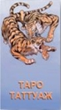 Таро Таттуаж (Руководство и карты) таро белой и черной магии руководство карты