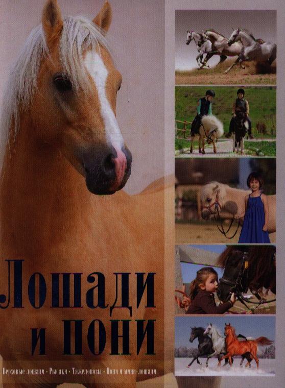 Жабцев В. Лошади и пони иванова м в костикова о д лошади и пони