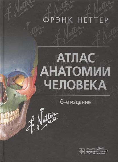 Неттер Ф. Атлас анатомии человека анна спектор большой иллюстрированный атлас анатомии человека