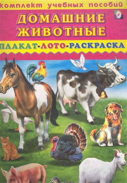 Комплект Домашние животные Плакат лото раскраска