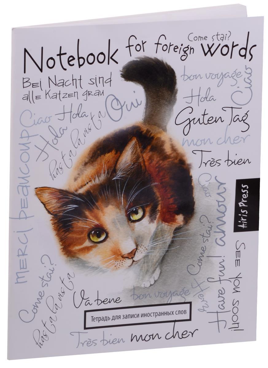 """Тетрадь для записи иностранных слов А5 32 листа """"Любопытная кошка"""""""