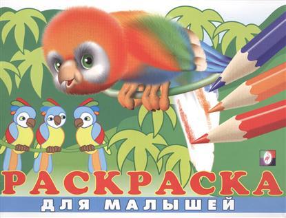 Раскраска для малышей (№ 6) (Попугай)