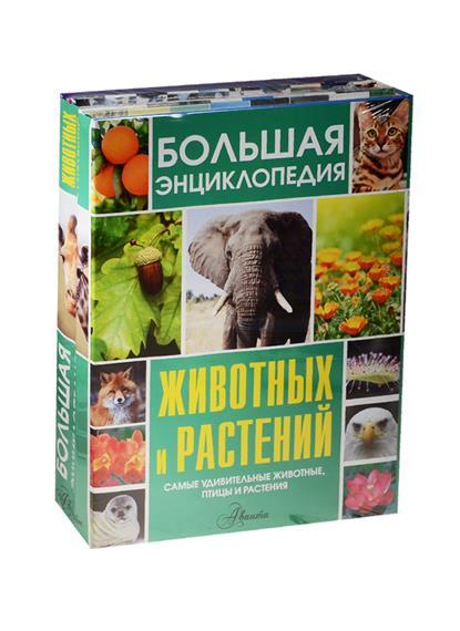 Большая энциклопедия животных и растений. Самые удивительные животные, птицы и растения (комплект из 3 книг) удивительные птицы