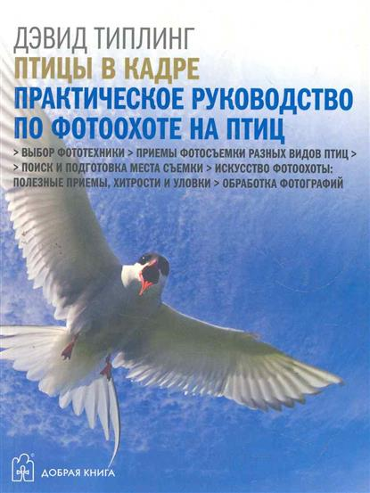 Птицы в кадре Практическое руководство по фотоохоте на птиц