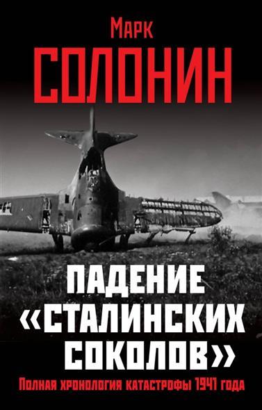 """Падение """"сталинских соколов"""". Полная хроника катастрофы 1941 года"""