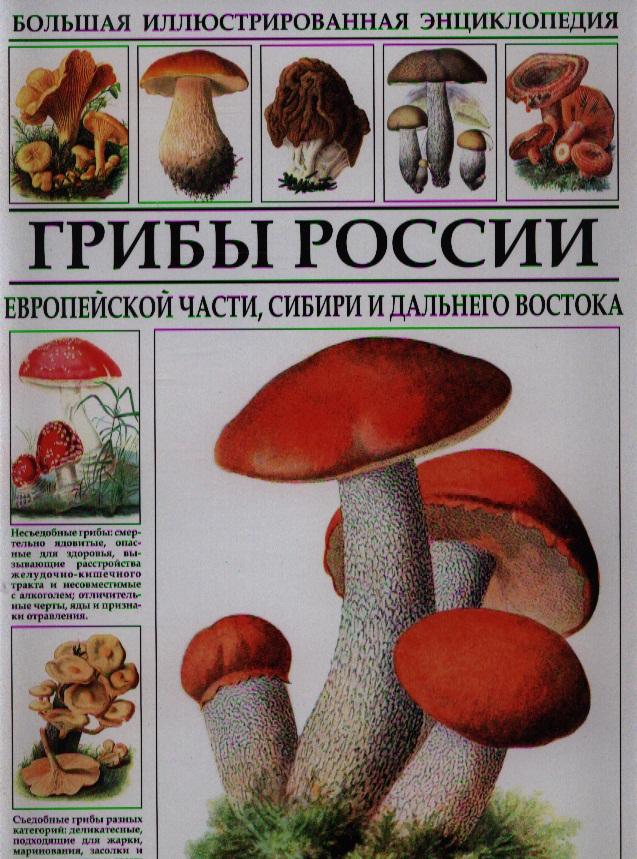Афонькин С. (ред.) Грибы России
