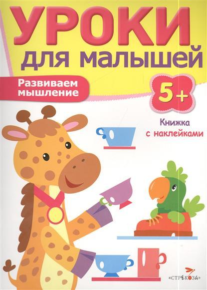 Попова И, Развиваем мышление. Книжка с наклейками развиваем мышление