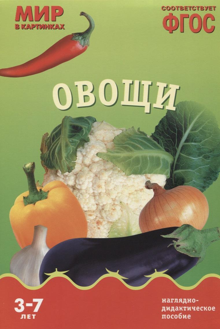 Минишева Т. Овощи. Наглядно-дидактическое пособие распорядок дня наглядно дидактическое пособие