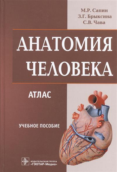 Сапин М., Брыскина З., Чава С. Анатомия человека. Атлас. Учебное пособие анатомия человека атлас