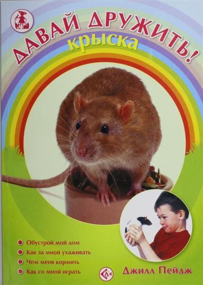Давай дружить Крыска