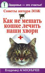 Как не мешать кошке лечить наши хвори