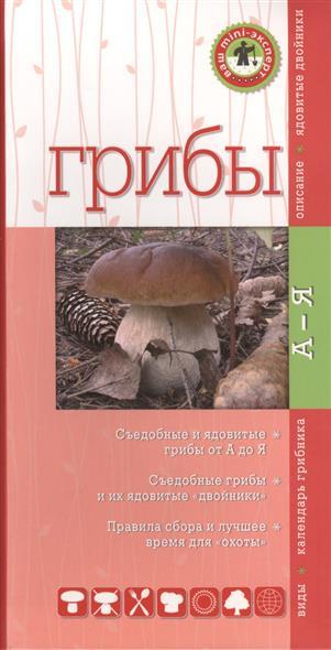 Грибы. Съедобные и ядовитые от А до Я. Съедобные грибы и их ядовитые