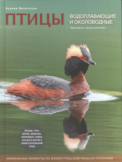 Птицы водоплавающие и околоводные. Звуковая энциклопедия