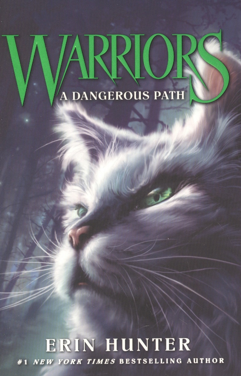 Hunter Е. Warriors #5: A Dangerous Path path