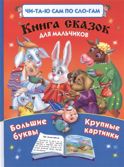 Дмитриева В. (сост.) Книга сказок для мальчиков. Большие буквы. Крупные картинки дмитриева в сост 1000 упражнений для мальчиков