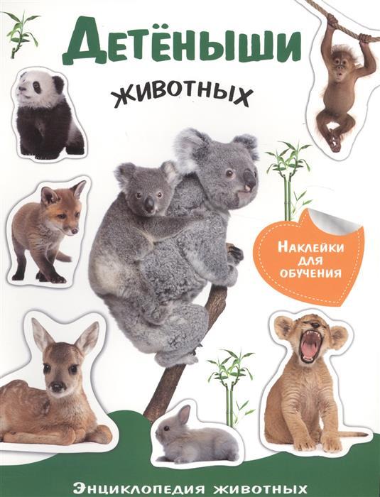 Детеныши животных Энциклопедия животных с наклейками ( Позина Е. (ред.) )