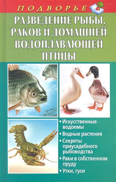 Разведение рыбы раков и домашней водоплавающей птицы