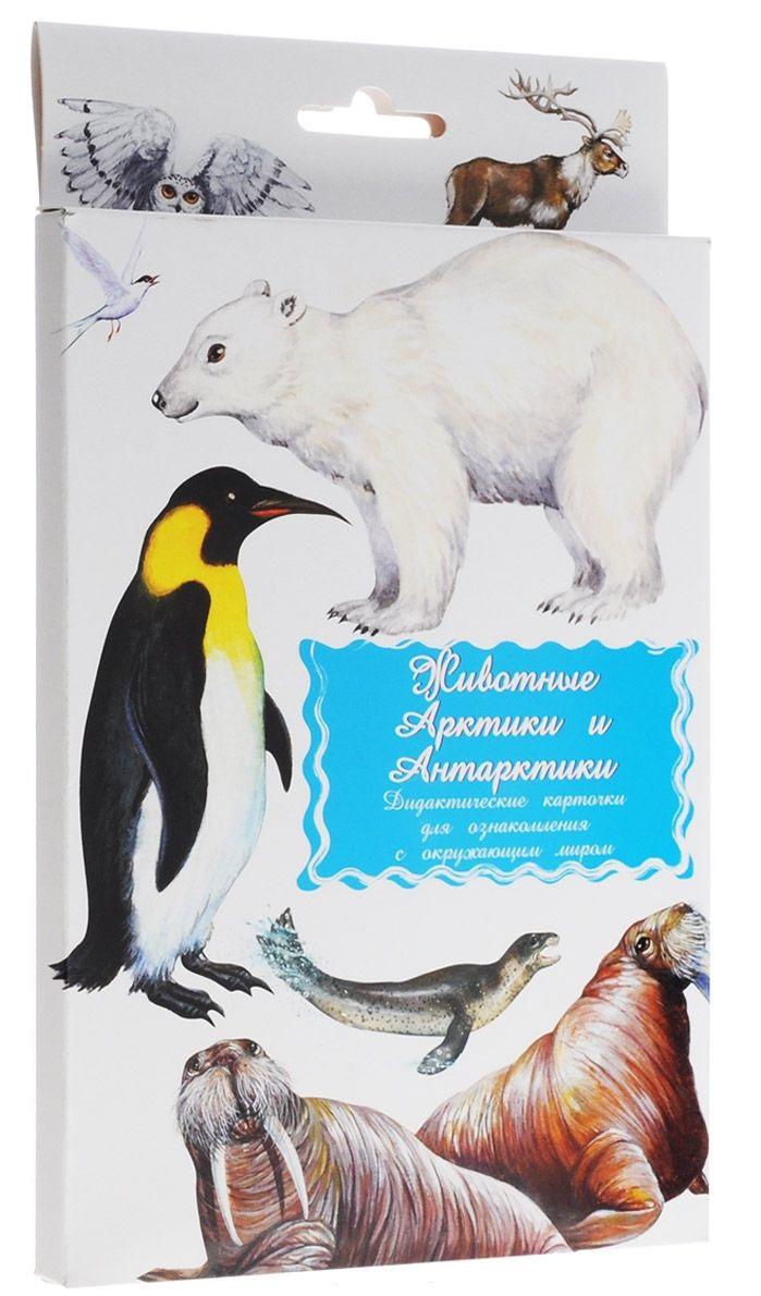 Животные Арктики и Антарктики Дидакт. карточки дидакт карточки домашние животные и их детеныши